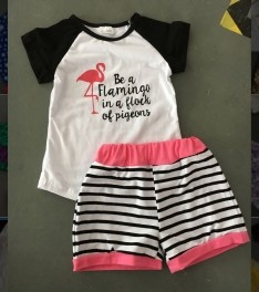 Be a Flamingo Shorts Set